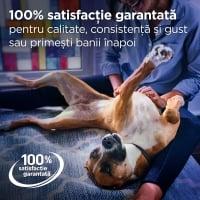 Pachet 2 x Hill's PD Canine Gastrointestinal Biome, 10 kg