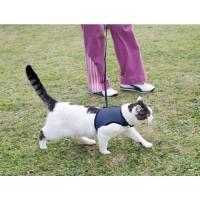 Ham pentru pisici Jogging XL