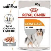 Hrana Royal Canin CCN Coat Loaf, 85 g