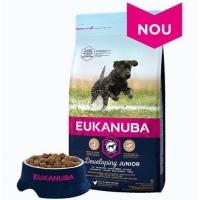 Eukanuba Junior Large cu Pui, 2 kg
