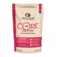Hrana Uscata Wellness Core Dry Sterilised cu Somon, 300 g