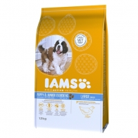 Iams Junior Large Breed cu Pui, 3 kg