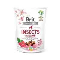 BRIT Care Crunchy Cracker, Insecte și Miel cu Zmeură, recompense fără cereale câini, 200g