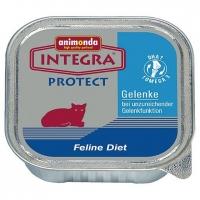 Integra Protect Articular, 100 g