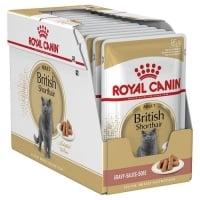 Pachet Royal Canin British Shorthair Adult, 24 x 85 g