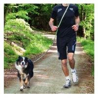 Lesa Jogging cu Amortizor 133 - 180 Cm x 20 Mm, Verde-Negru