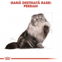 Royal Canin Persian, 10 kg