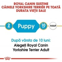 Royal Canin Yorkshire Terrier Puppy, 1.5 kg