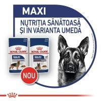 Royal Canin Maxi Adult, 140 g