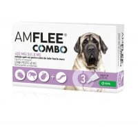 Amflee Combo Caine XL (40-60 kg), 3 Bucati