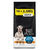 Pro Plan Adult Large Breed Athletic cu Pui 14 kg + 2.5 kg Gratis
