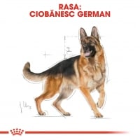 Royal Canin German Shepherd Adult, 3 kg