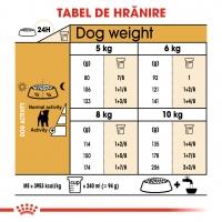 ROYAL CANIN Jack Russell Adult, hrană uscată câini, 1.5kg