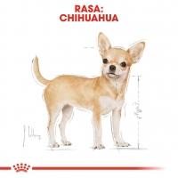 Royal Canin Chihuahua Adult, 85 g