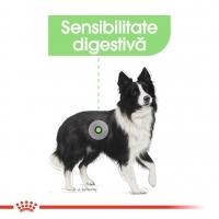 Royal Canin CCN Medium Digestive Care 10 Kg