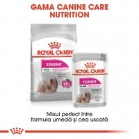 Royal Canin Exigent Loaf, 85 g