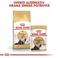 Royal Canin Persian Adult, bax hrană umedă pisici, (pate), 85g x 12