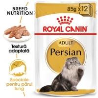 Pachet Royal Canin Persian, 12x85 g