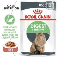 Pachet Royal Canin Digest Sensitive, 12 x 85 g