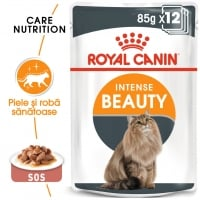 Pachet Royal Canin Intense Beauty, 24 x 85 g