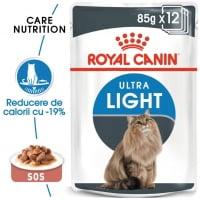 Pachet Royal Canin Ultra Light, 24 x 85 g