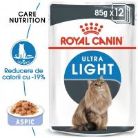 Pachet Royal Canin Ultra Light in Jelly, 12 x 85 g