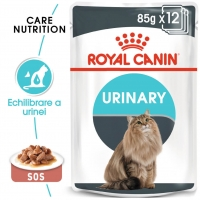 Pachet Royal Canin Urinary Care, 12 x 85 g