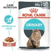 Pachet Royal Canin Urinary Care, 24 x 85 g