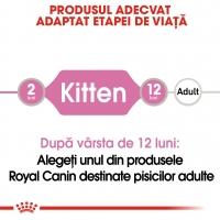 Royal Canin Kitten, bax hrană umedă pisici, (în sos), 85g x 12