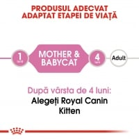 Royal Canin Babycat Loaf, 195 g