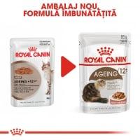 Royal Canin Ageing 12+, bax hrană umedă pisici senior, (în sos), 85g x 12