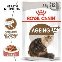 Pachet Royal Canin Ageing 12+, 12 x 85 g