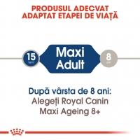 Pachet Royal Canin Maxi Adult, 10x140 g