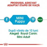 Pachet Royal Canin Mini Puppy, 12 x 85 g