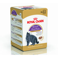 Royal Canin British Shorthair 6 x 85 g