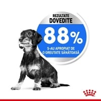Royal Canin Mini Light Weight Care 3 Kg
