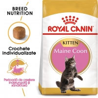 Royal Canin Maine Coon Kitten, 10 kg