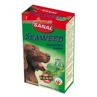 Sanal Dog Alge Marine, 100 g