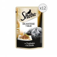 Sheba Plic cu Curcan in Jeleu, 12 x 85 g