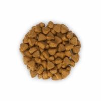Hill's SP Feline Kitten cu Pui, 400 g