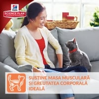 Hill's SP Feline Adult cu Miel, 10 kg