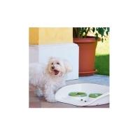 Tavita cu Doua Castroane Plastic, 46 x 35 x 11 cm, Alb - Verde