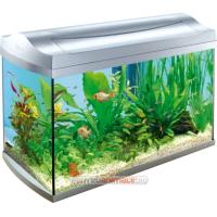 Acvariu Tetra AquaArt Shrimps 60L