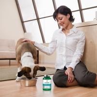 Vet's Best Supliment Nutritiv pentru Caini, Comfort Calm, 60 tablete