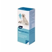 Viyo Recuperation Dog, 150 ml