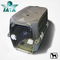 Cusca Transport Pet Cargo 500