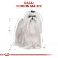 Royal Canin Bichon Maltese Adult 500 g