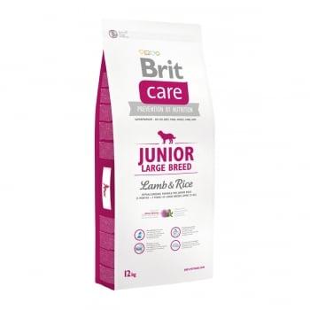 BRIT Care Junior Large Breed, L-XL, Miel cu Orez, hrană uscată câini junior, 12kg