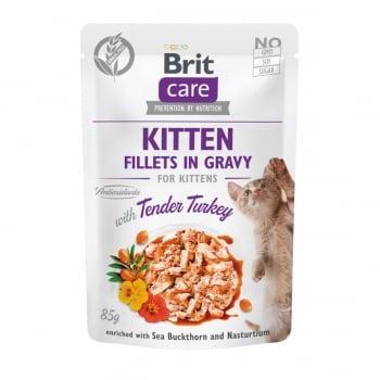 BRIT Care Kitten Fillets In Gravy, Curcan, plic hrană umedă fără cereale pisici junior, (în sos), 85g
