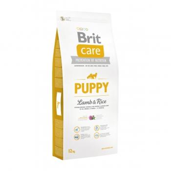BRIT Care Puppy S-XL, Miel cu Orez, hrană uscată câini junior, 12kg